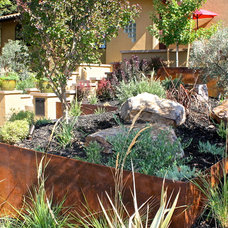 Mediterranean Landscape by Michael Glassman & Associates