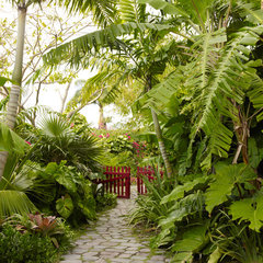 tropical landscape by Raymond Jungles, Inc.