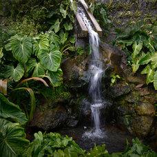 Tropical Landscape by Raymond Jungles, Inc.