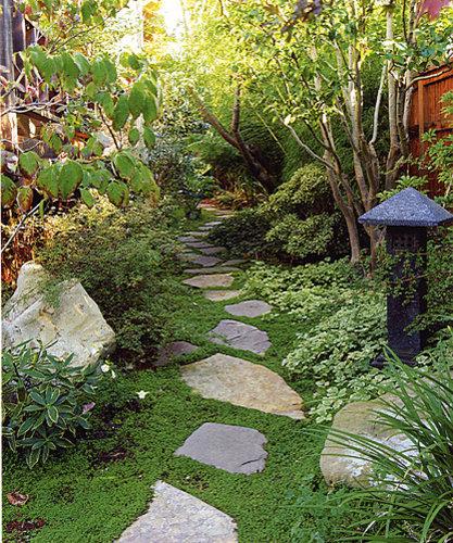 Thin Garden Design: Narrow Side Yard Home Design Ideas, Renovations & Photos