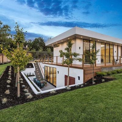 Design ideas for a contemporary backyard landscaping in San Francisco.