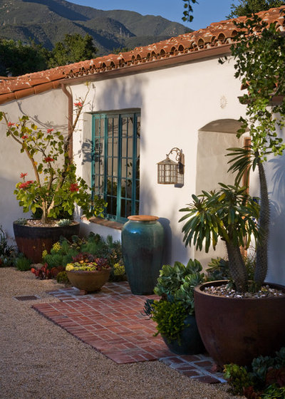 Pots bring fuss free color to the garden - Mediterranean garden plants colors and scents ...