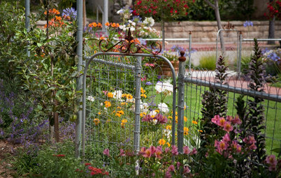 Get a Head Start on Planning Your Garden, Even if It's Snowing