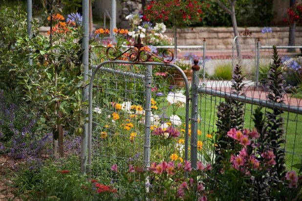 Traditional Landscape by Margie Grace - Grace Design Associates