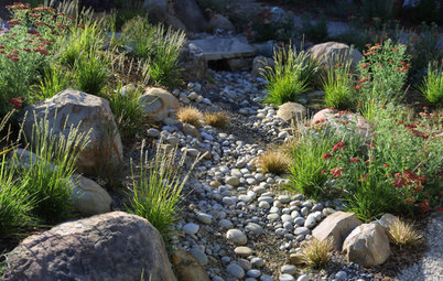 How to Design Your Landscape to Slow Down Water