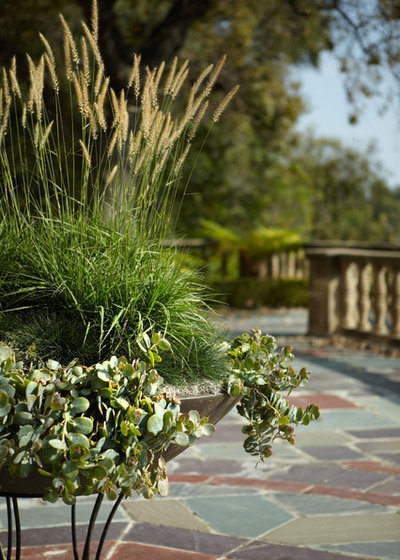 Классический Сад by Margie Grace - Grace Design Associates