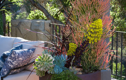12 Fabulous Fall Container Gardens