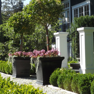 Graceful planters make a statement