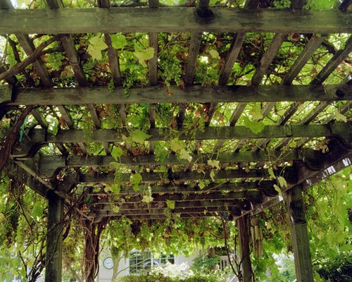 grape arbor designs photos - Arbor Designs Ideas