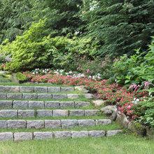 Outdoor Steps In Yard
