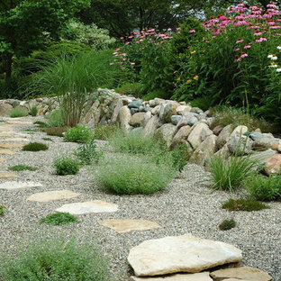 Gravel Garden and Grasses