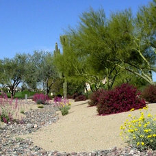 Landscape by Noelle Johnson Landscape Consulting