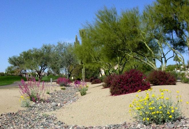 Landscape by Noelle Johnson Landscape Consulting