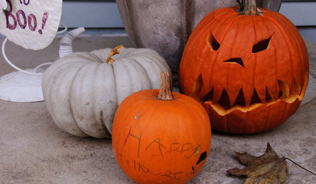 Come Scegliere, Intagliare e Decorare una Zucca di Halloween