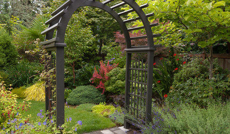 Great Garden Combo: 9 Plants for an Intriguing Entrance