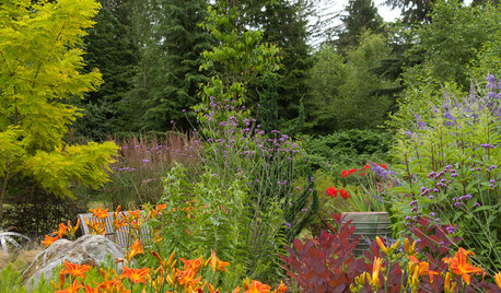 Great Garden Combo: Planting for Fiery Color and Beautiful Wildlife