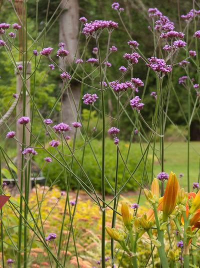 Garten by Le jardinet