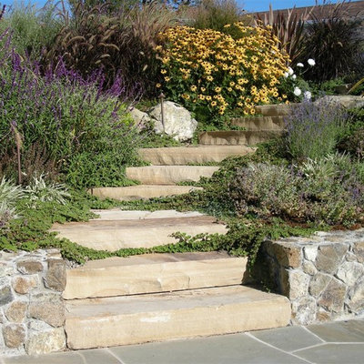Design ideas for a traditional hillside stone landscaping in San Francisco.