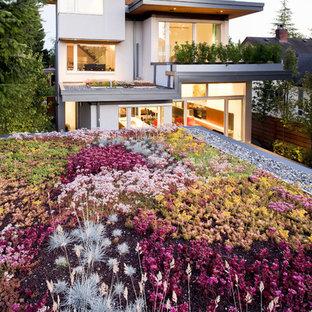 Idee per un giardino contemporaneo esposto in pieno sole sul tetto