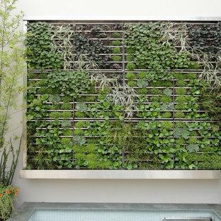 Immagine di un giardino contemporaneo