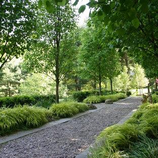Exemple d'un jardin à la française arrière tendance de taille moyenne avec du gravier, une entrée ou une allée de jardin et une exposition ombragée.