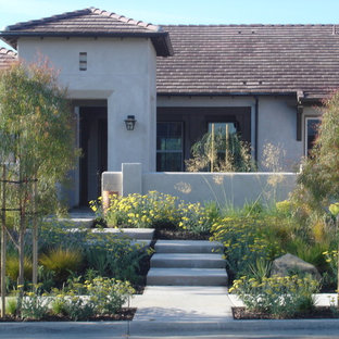 This is an example of a contemporary front yard landscaping in San Luis Obispo.