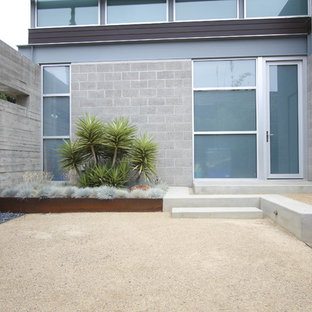 Design ideas for a modern courtyard decomposed granite landscaping in San Diego.