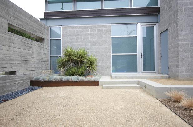 Modern Garden by Grounded - Richard Risner RLA, ASLA