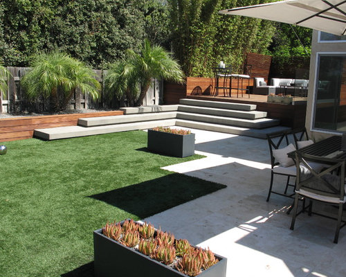 Pygmy date palm houzz for Modern back garden designs
