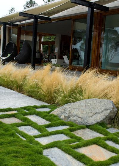 Contemporary Garden by Grounded - Richard Risner RLA, ASLA