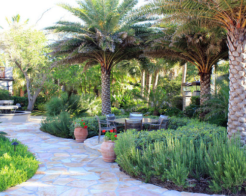 Palm tree landscape ideas pictures remodel and decor for Garden design with palms