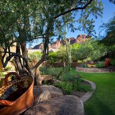 Southwestern Landscape by Bianchi Design