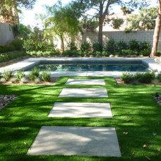 Modern Landscape by Courtney Landscape & Pools