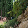 A Challenging Rocky Slope Becomes a Standout Backyard Feature