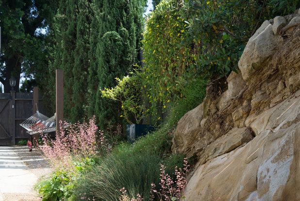 Modern Landscape by June Scott Design