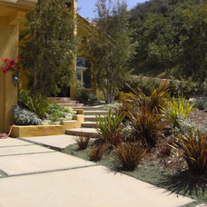 Mediterranean Landscape by Stout Design-Build