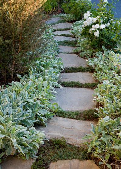 Contemporary Garden by Stout Design-Build