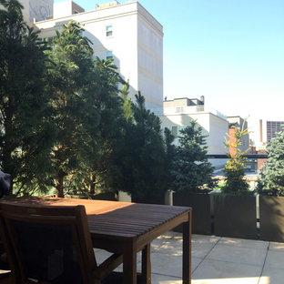 Ispirazione per un giardino minimal in ombra sul tetto e di medie dimensioni con un giardino in vaso e pavimentazioni in cemento