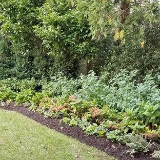 Design ideas for a large traditional partial sun backyard formal garden in Philadelphia for winter.