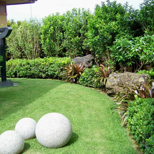 Inspiration for a mid-sized tropical partial sun front yard landscaping in Hawaii.