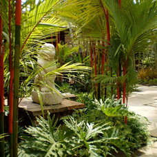 Tropical Landscape by VITA Planning and Landscape Architecture