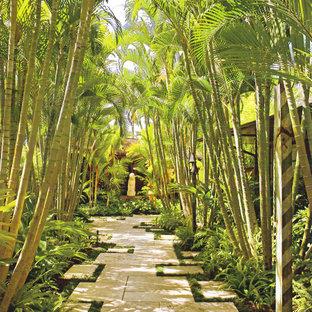 Immagine di un giardino tropicale in ombra