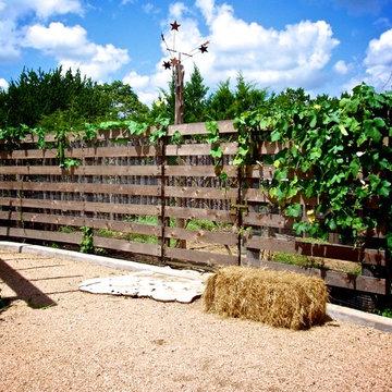 Hays County Modern Farmhouse
