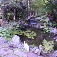 Eclectic Landscape Heintz Backyard Respite