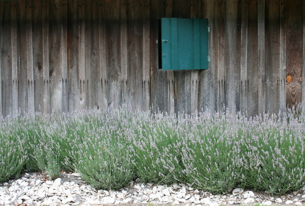 Farmhouse Landscape by Gardening with Confidence®