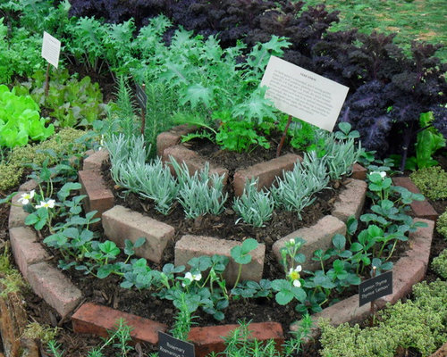 Small herb gardens ideas pictures remodel and decor for Herb garden design