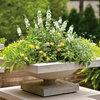 Как правильно: Сделать горшечный сад в середине лета