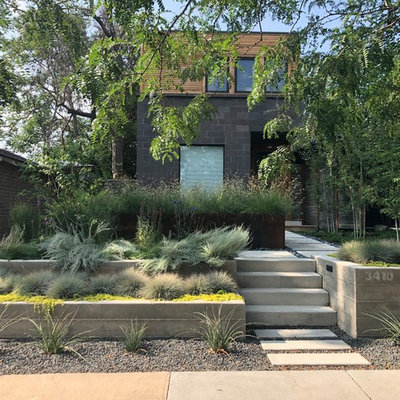 Photo of a contemporary front yard retaining wall landscape in Denver.