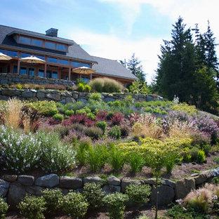 Cette image montre un jardin design avec une pente, une colline ou un talus.