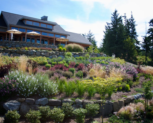 Slope planting houzz for Hillside landscaping